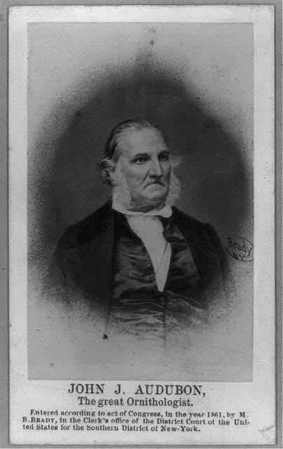 https://picryl.com/media/john-james-audubon-half-length-portrait-facing-right